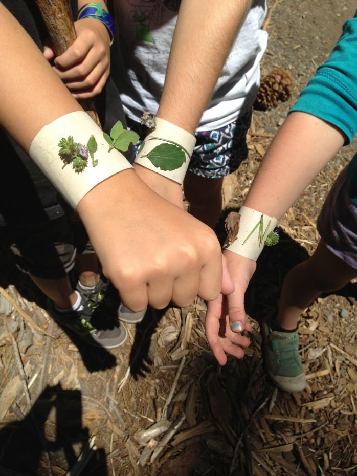 sharron nature bracelets 1