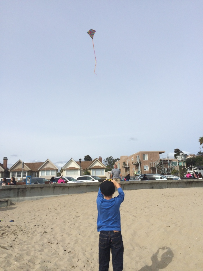 go fly a kite 1